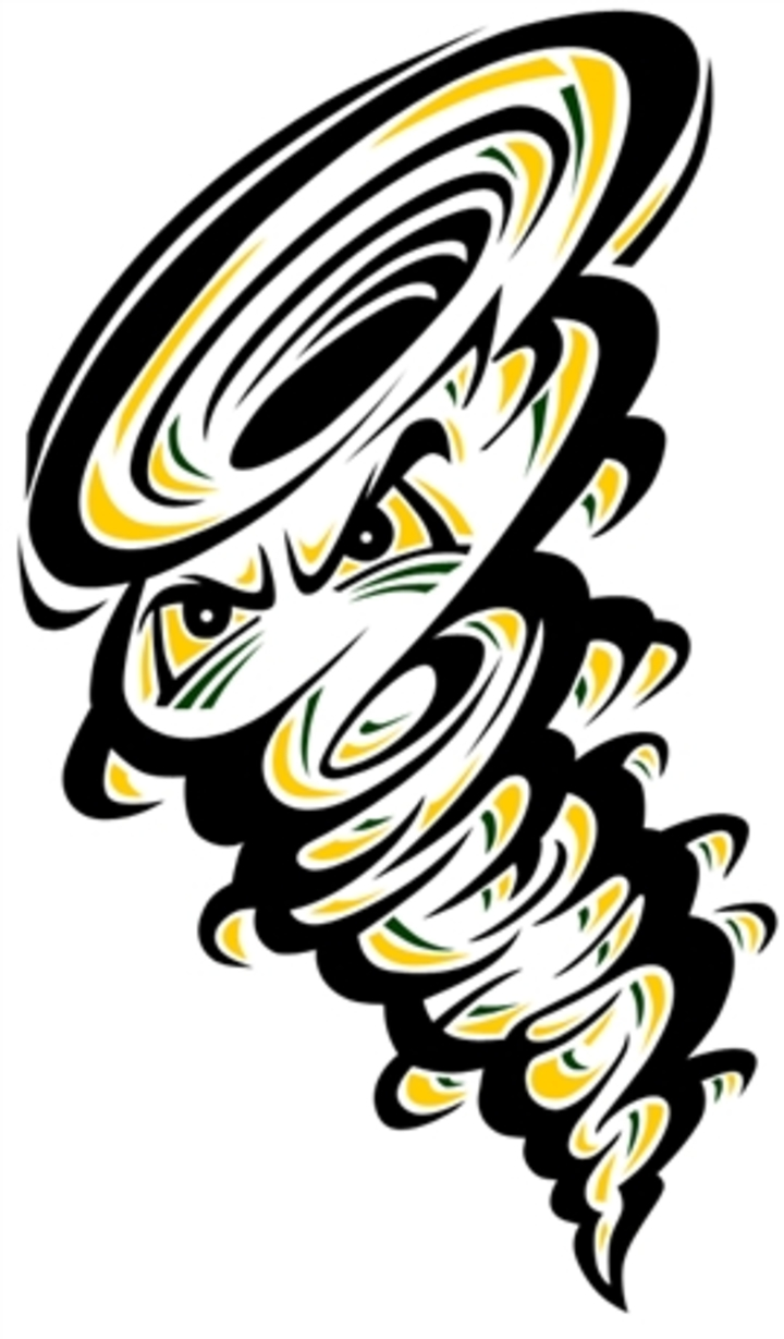 Abingdon-Avon High School mascot