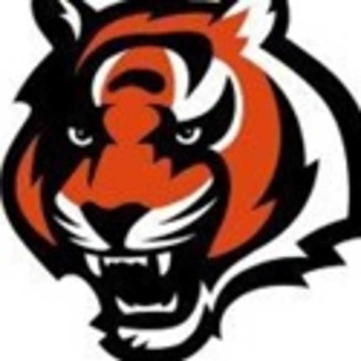 Beardstown High School mascot