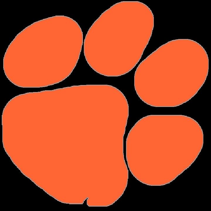 Brentsville District High School mascot