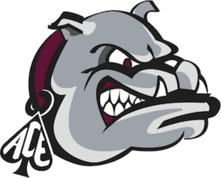 Lower Merion High School mascot