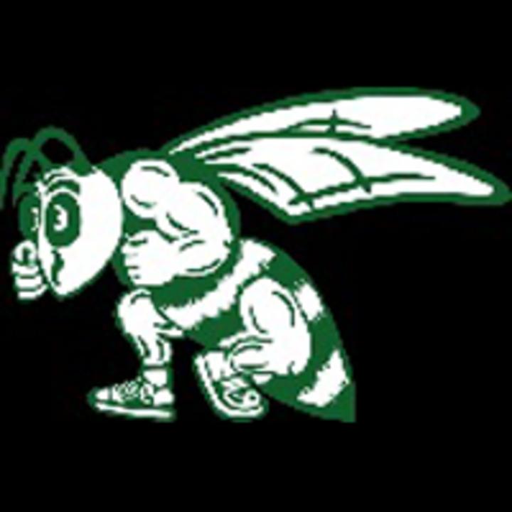 Scales Mound High School mascot