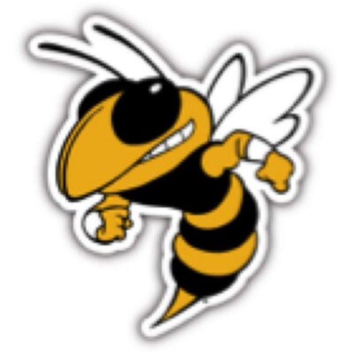Amandla Charter School mascot