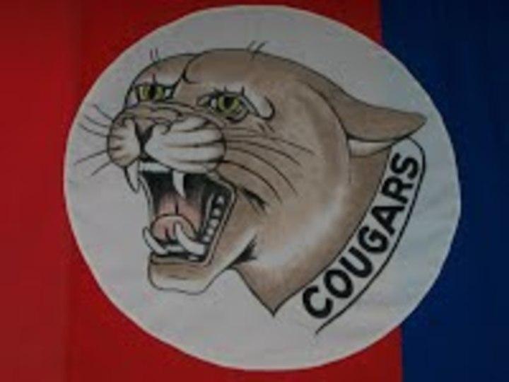 Hardin County High School mascot