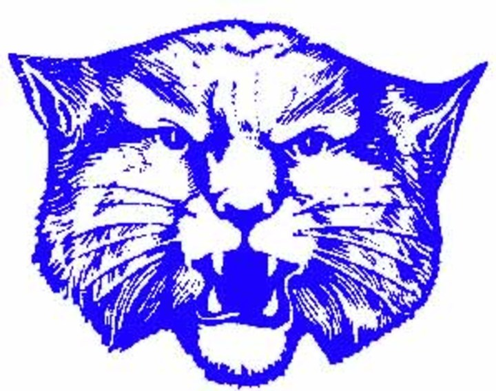 Milford High School mascot
