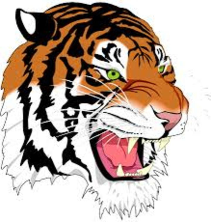 Hutsonville High School mascot