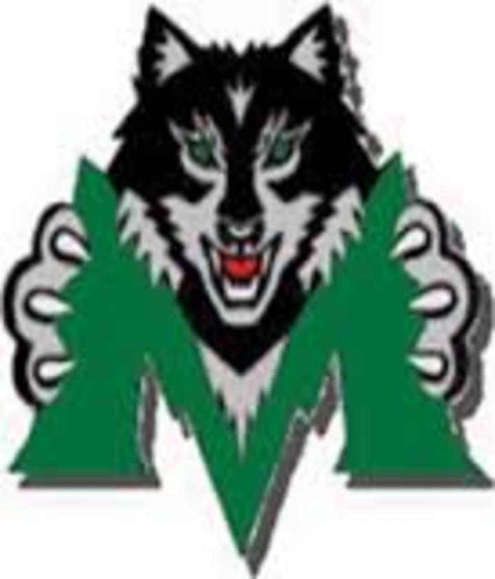 Midland High School mascot
