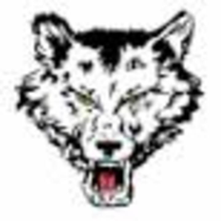 Pearl City High School mascot