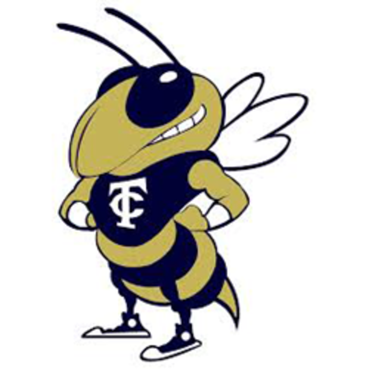 Thomas County Central High School mascot