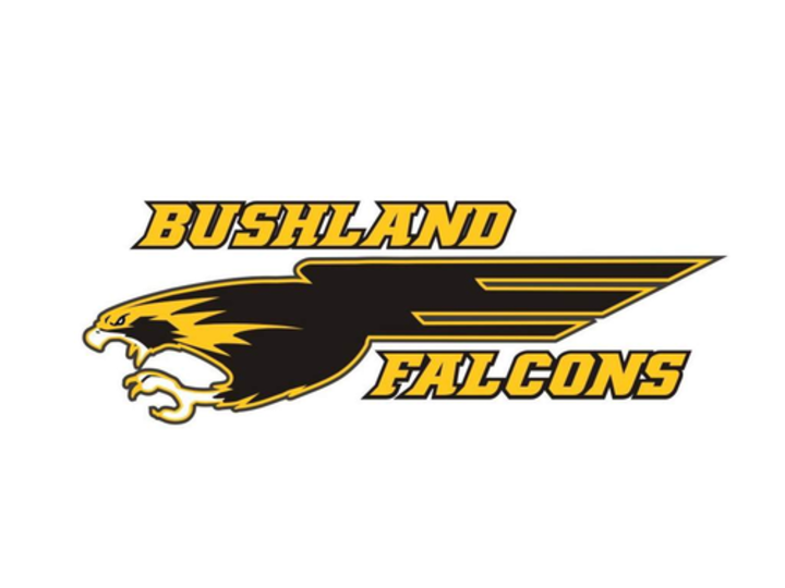 Bushland High School mascot