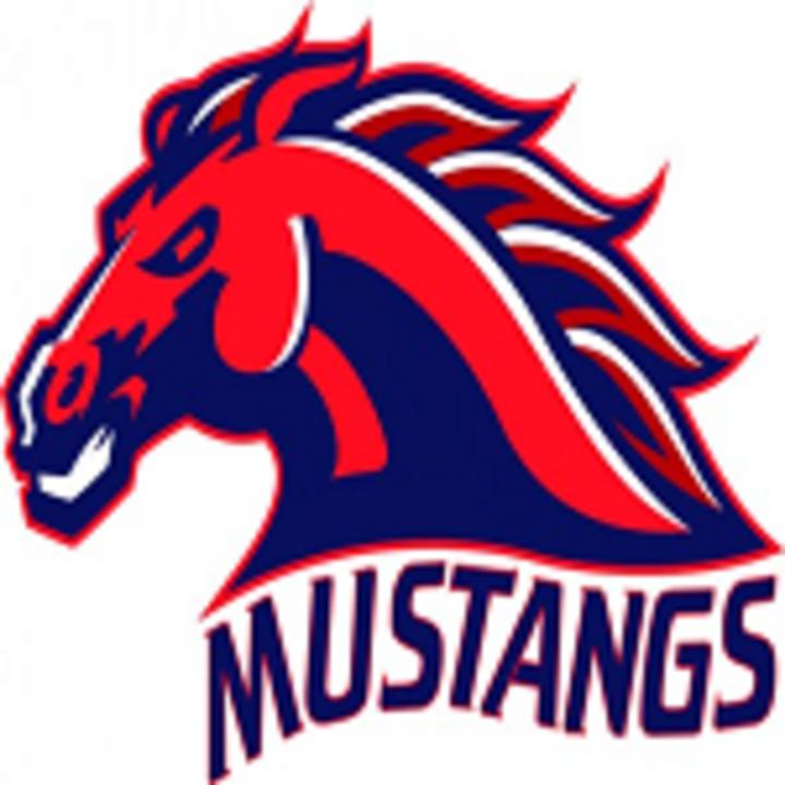 East Rowan High School mascot