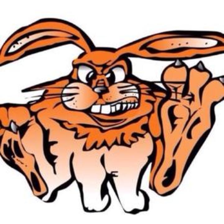 Fisher High School mascot