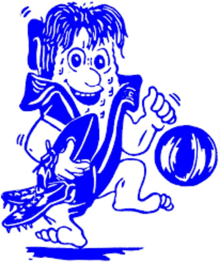 Hoopeston Area High School mascot