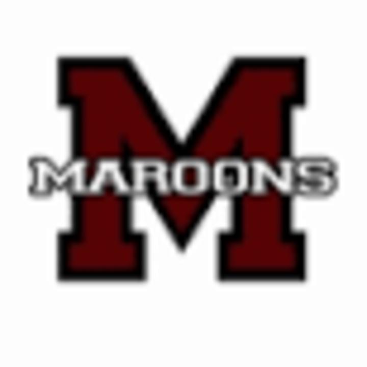 Robinson High School mascot