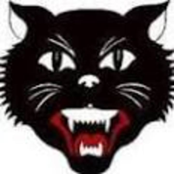 East Aurora High School mascot