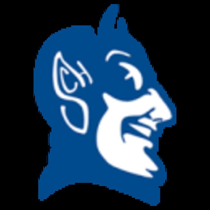 Peotone High School mascot