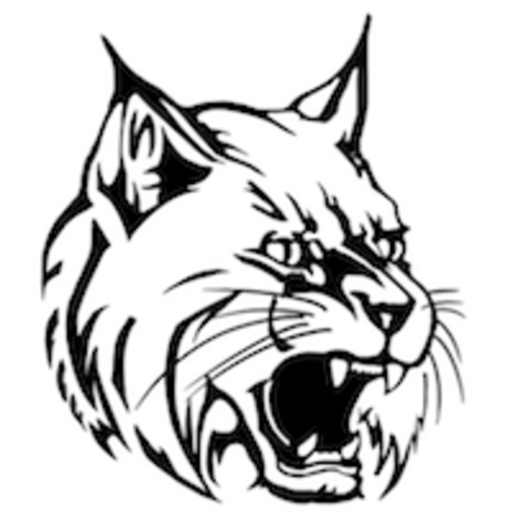 West Chicago Community High School mascot