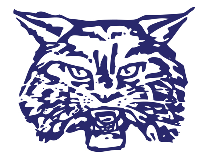 Wilmington High School mascot