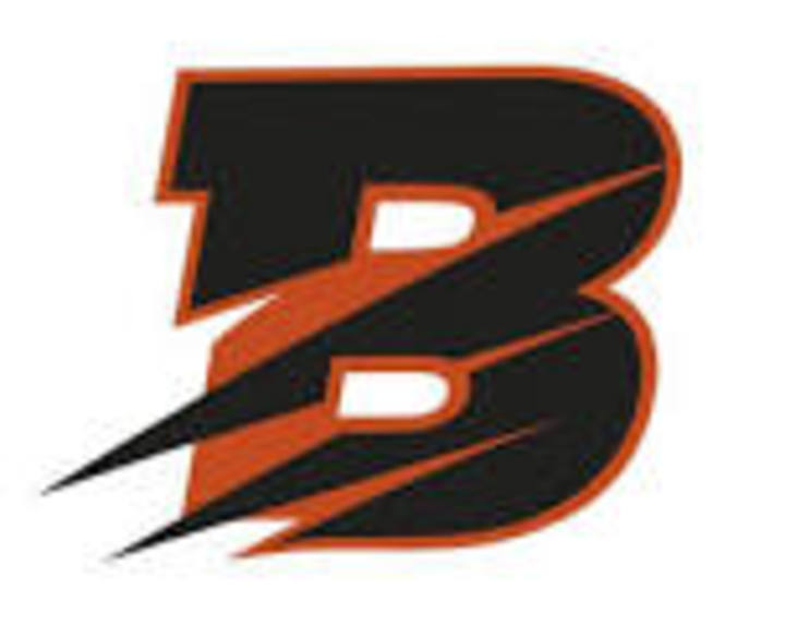 Byron High School mascot