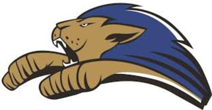 Rockford Christian High School mascot