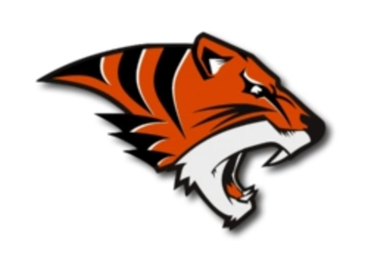 Bogan High School mascot