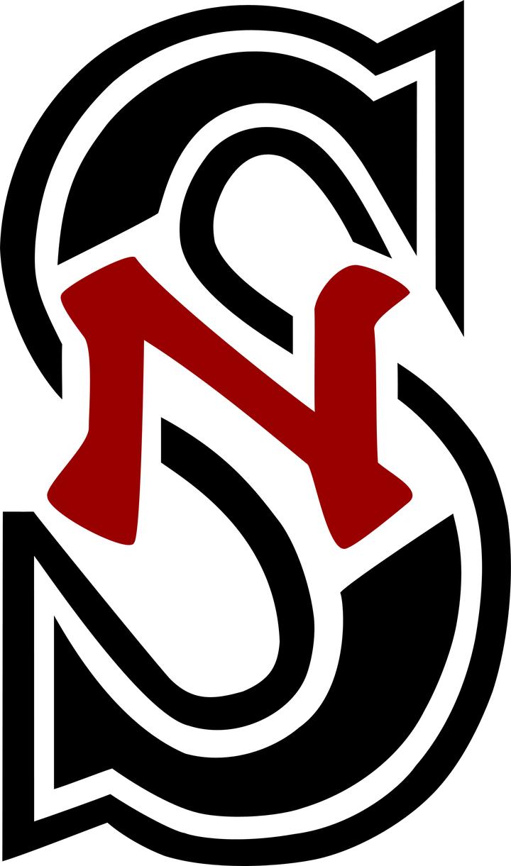 South Newton High School mascot