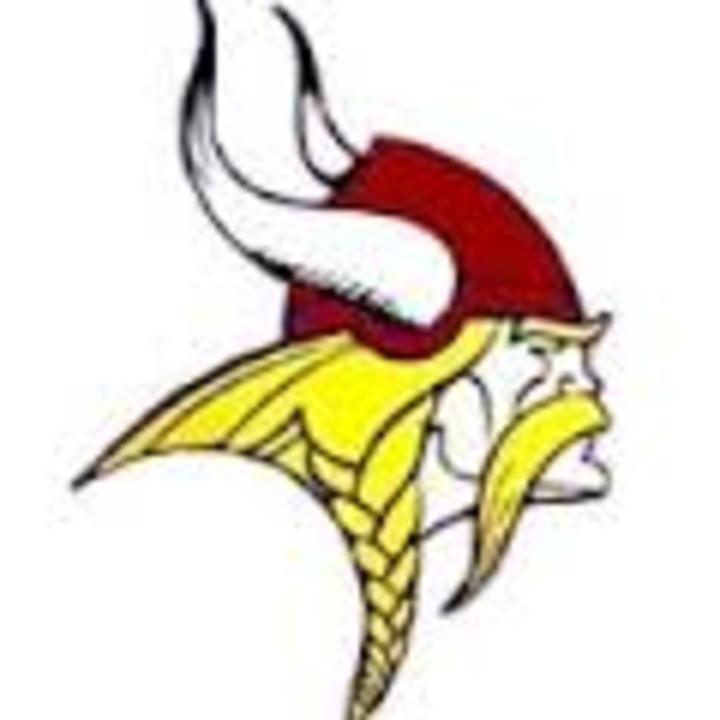 Danville High School mascot