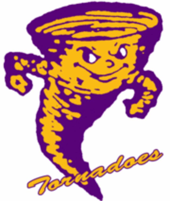 Taylorville High School mascot