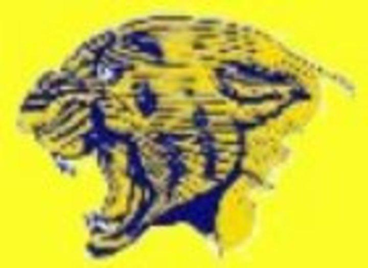 O'Fallon Township High School mascot
