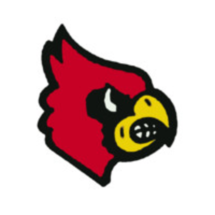 Erie High School mascot