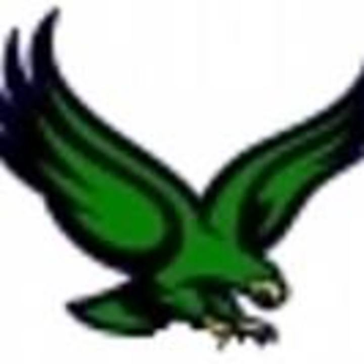Bartlett High School mascot