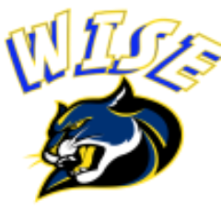 Wise High School mascot