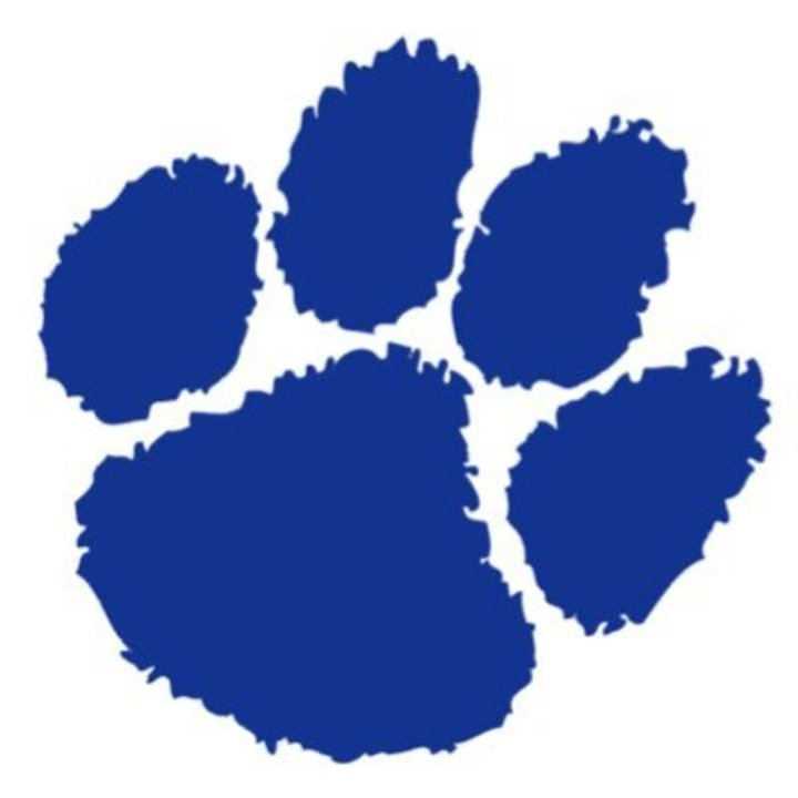 Millbrook High School mascot
