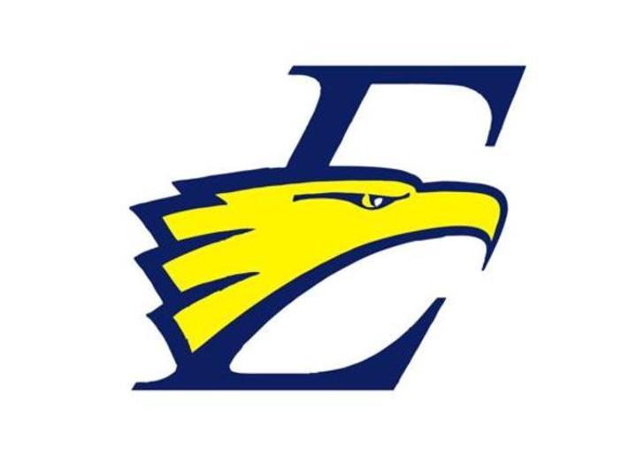 East Mecklenburg High School mascot