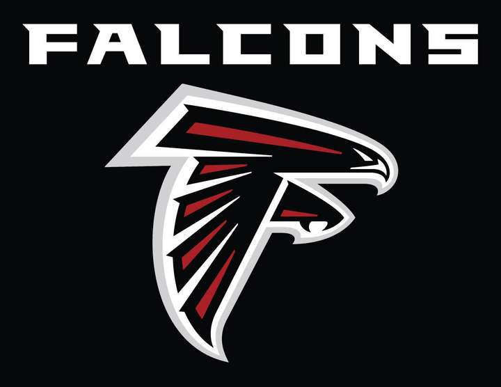 Falcons mascot