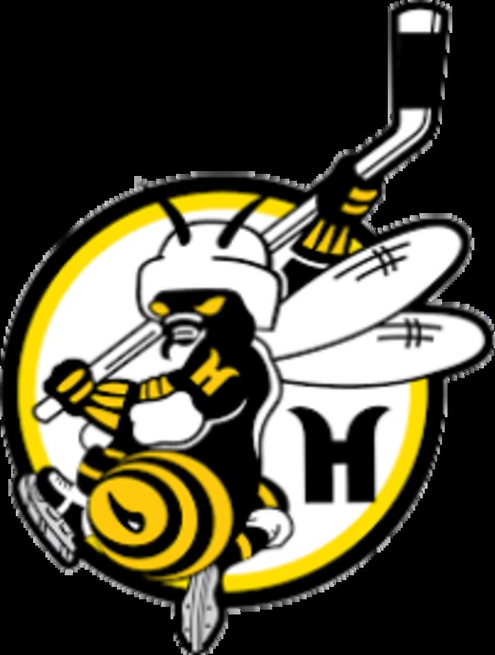 Mt. Lebanon Hornets