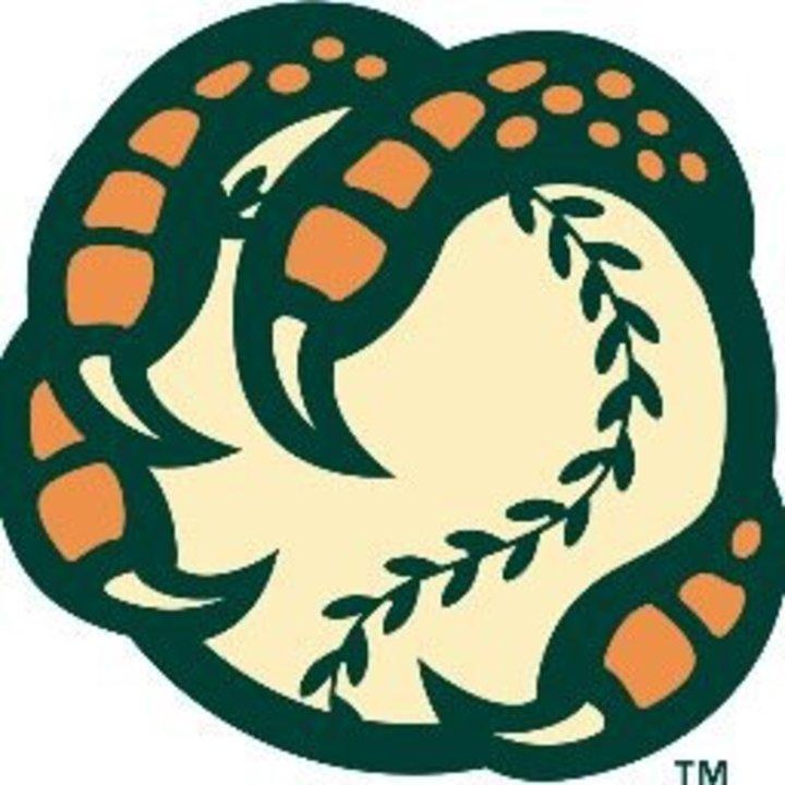 Boise mascot