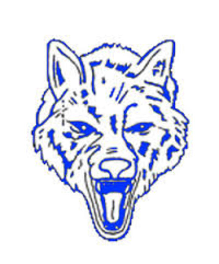 Boone Grove High School mascot