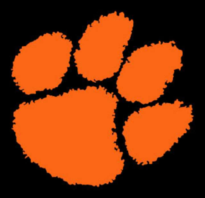 Rosman High School mascot