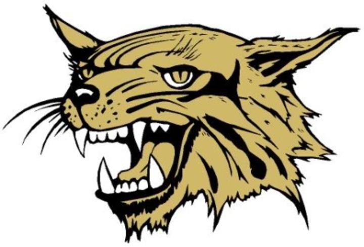 North Gaston High School mascot