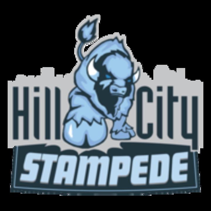 Hill City mascot