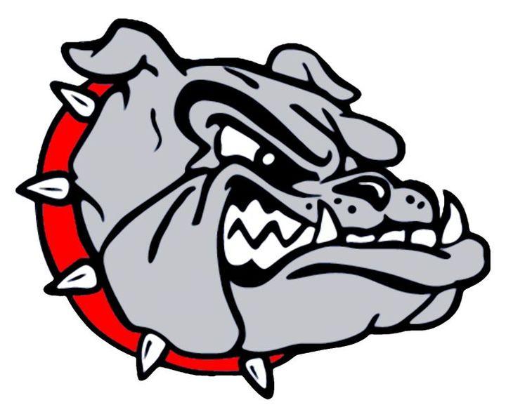 Terry Sanford High School mascot