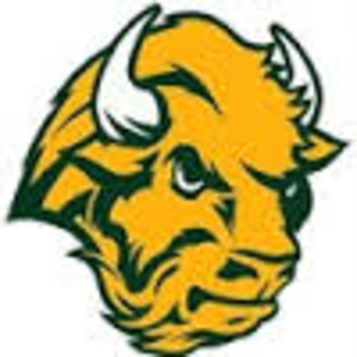 Benton Central High School mascot