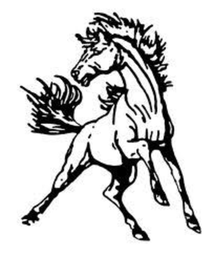 North Moore High School mascot
