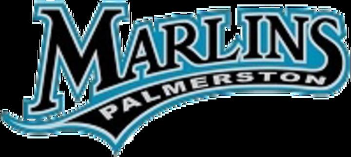 2016 - Palmerston mascot