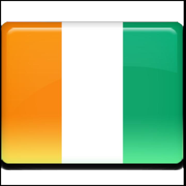 Côte d'Ivoire National Team mascot