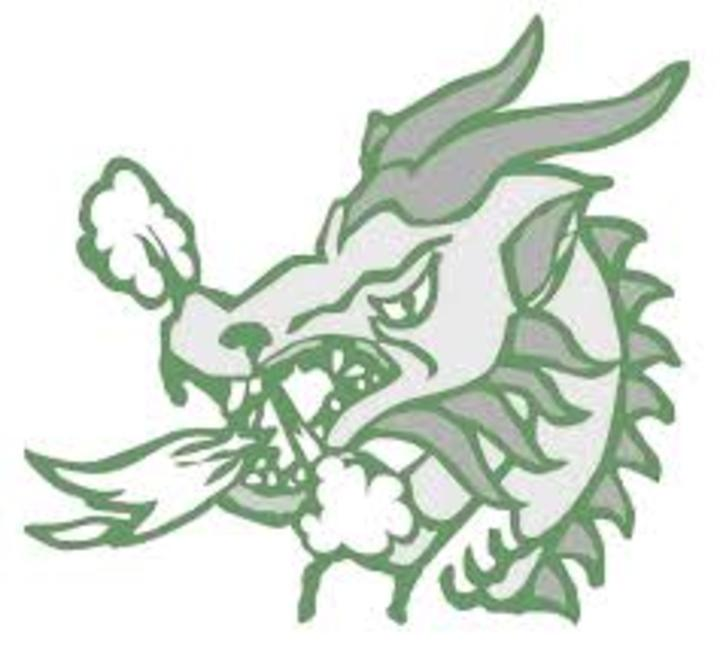 Lake Placid High School mascot