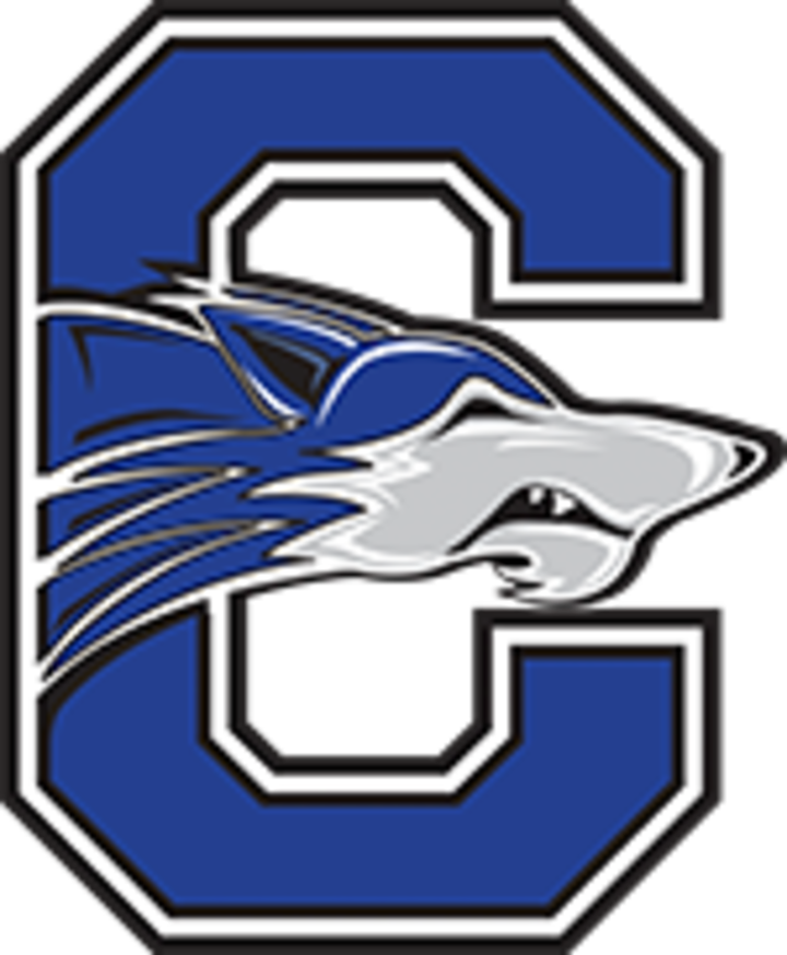 Chandler High School mascot