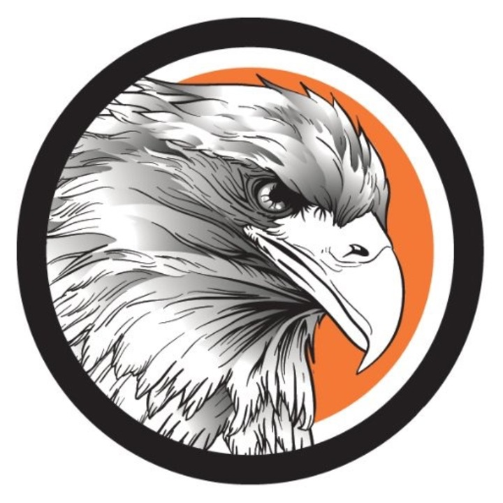 Davie County High School mascot