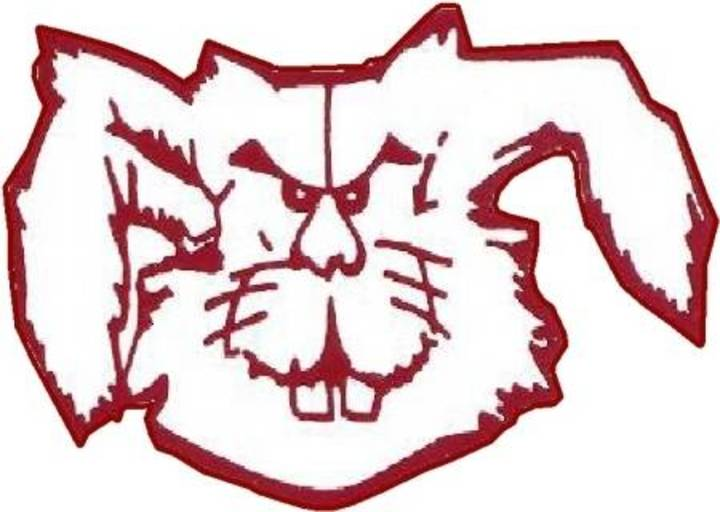 Bowie High School mascot