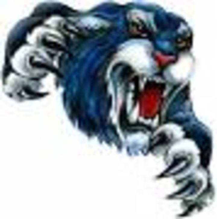 Douglas High School mascot